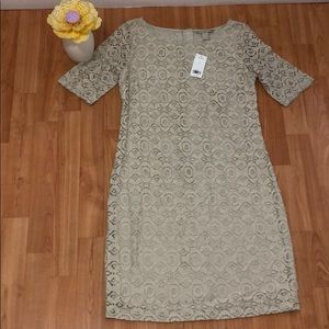 NWT Banana Republic Lace Dress